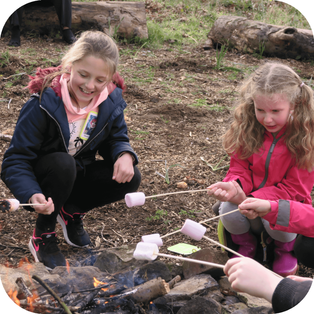 Brownies toast marshmallows on a campfire